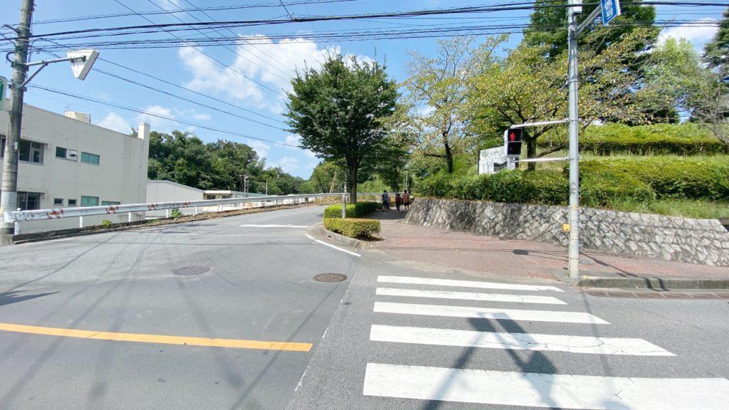 飯能河原 駐車場への道